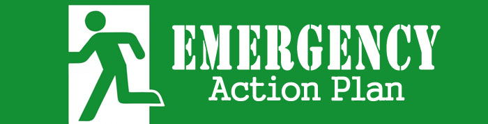 emergency action plan example
